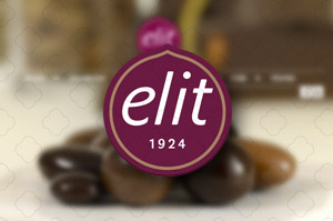 Elit-WebSitesi